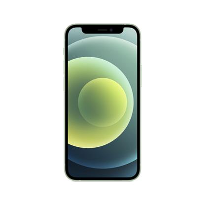buy IPHONE MOBILE 12 MINI 256GB GREEN :Green