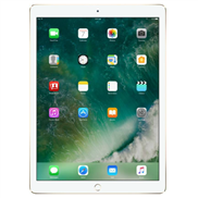 buy Apple iPad Wi-Fi (32GB, Gold)