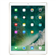 Apple iPad Pro Wi-Fi 256GB (Gold)