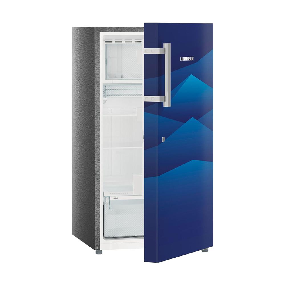 Liebherr DB2220-20 220Ltr Direct Cool Refrigerator (Blue