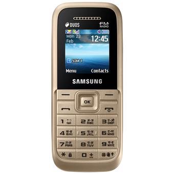 buy SAMSUNG MOBILE GURU PLUS B110E GOLD :Samsung
