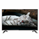 Haier LE32B9000M 32 (80cm) HD Ready LED TV
