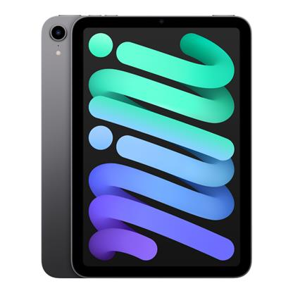 buy APPLE IPAD MINI 6TH GEN WI-FI 256GB SPACE GREY MK7T3HN/A :12 - 12.9 MP