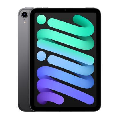 buy APPLE IPAD MINI 6TH GEN CELLULAR 256GB SPACE GREY MK8F3HN/A :12 - 12.9 MP