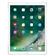 Apple iPad Pro Wi-Fi 256GB (Silver)