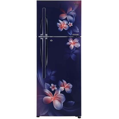 buy LG REF GLT292RBPN BLUE PLUMERIA :Toughened Glass