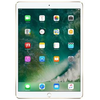 buy APPLE IPAD PRO 12.9 WIFI 256GB GOLD MP6J2HN/A :Apple