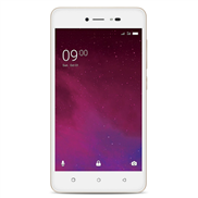 buy Lava Z60 (Gold)