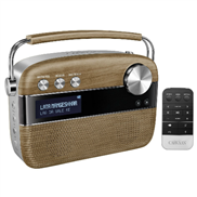buy Saregama Carvaan Music Player (Brown)